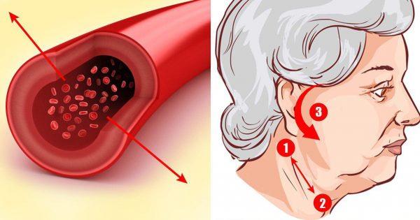 Точки для снижения артериального давления – какие места массировать при высоких цифрах тонометра