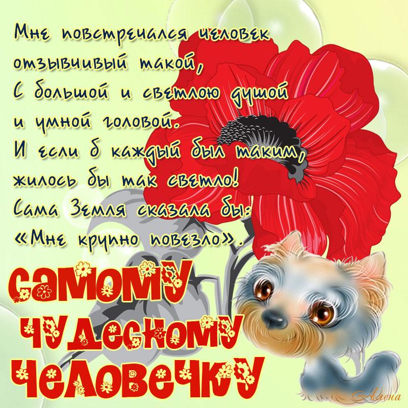 стихи милой подруге и хорошему человеку