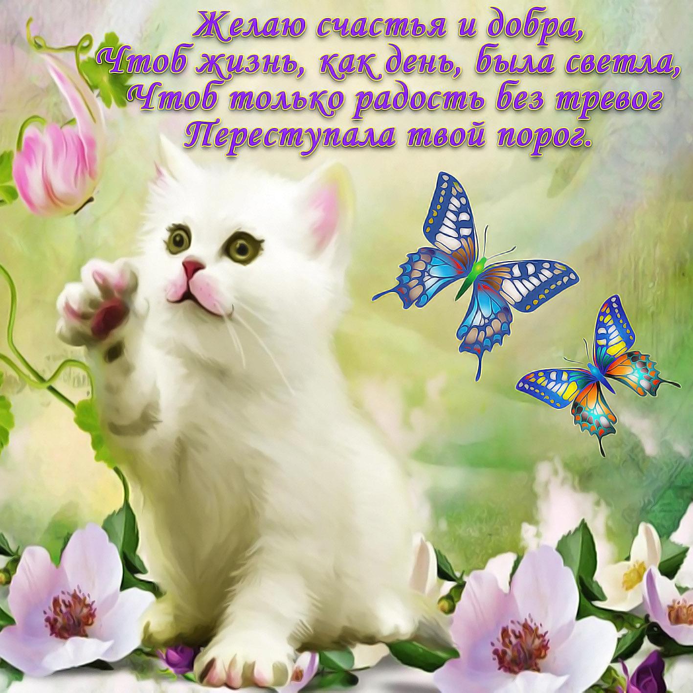 День, открытка с пожеланием добра и счастья женщине