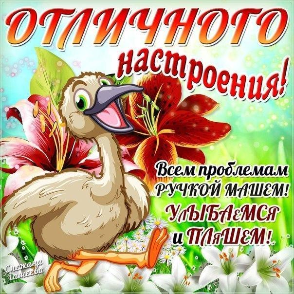 Открытки доброго дня и хорошего настроения прикольные открытки, правильно заполнить