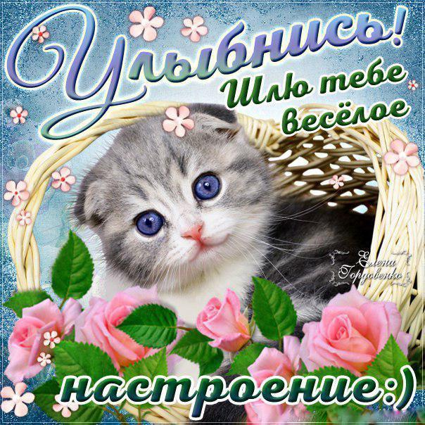 Для веселого настроения открытки, надписью