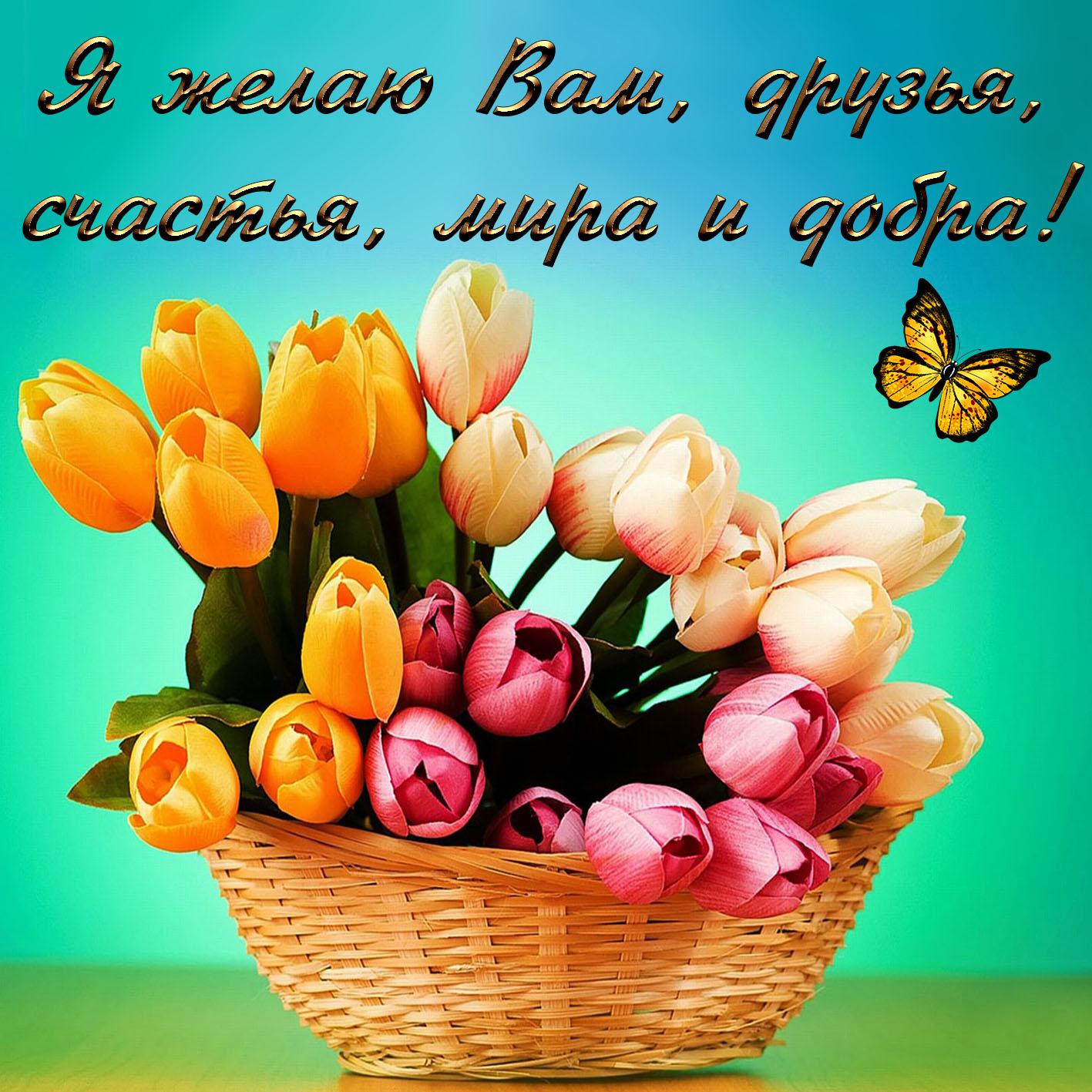 Открытки для друзей с пожеланиями счастья и добра