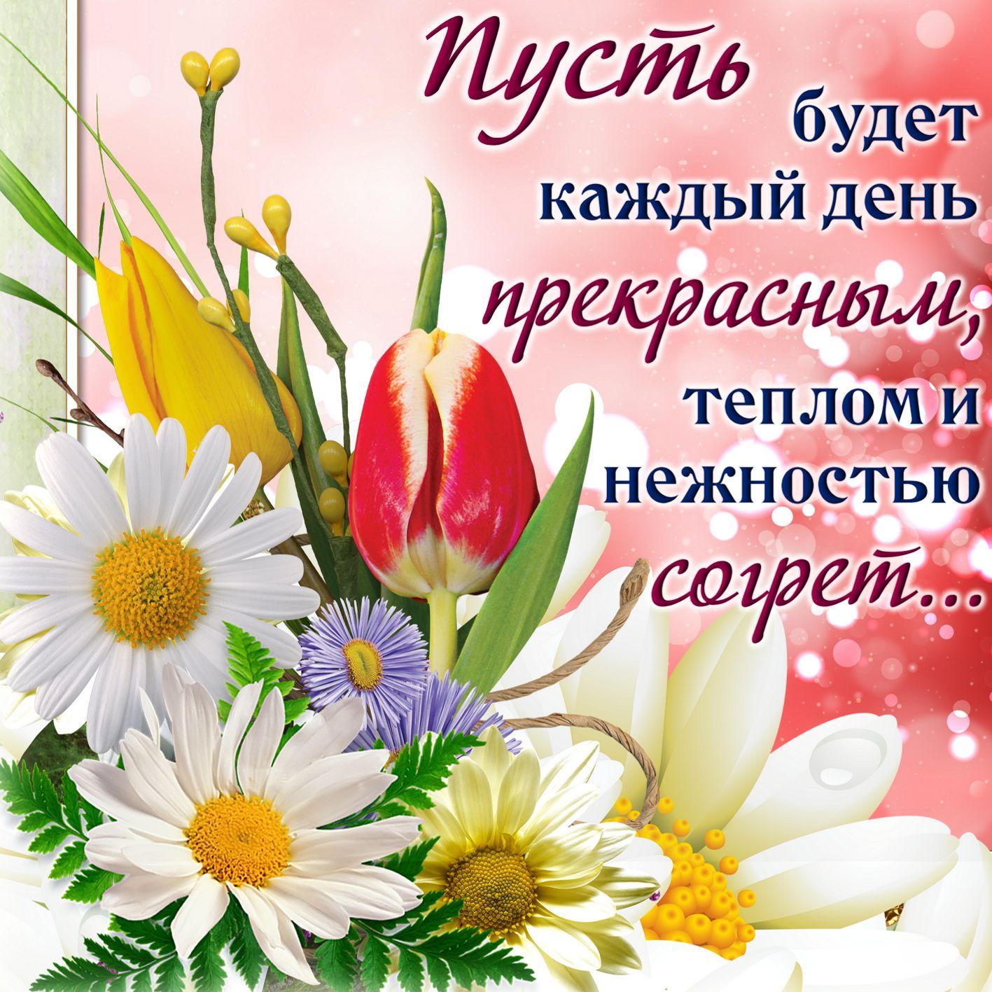 Прекрасного дня и здоровья, рождения