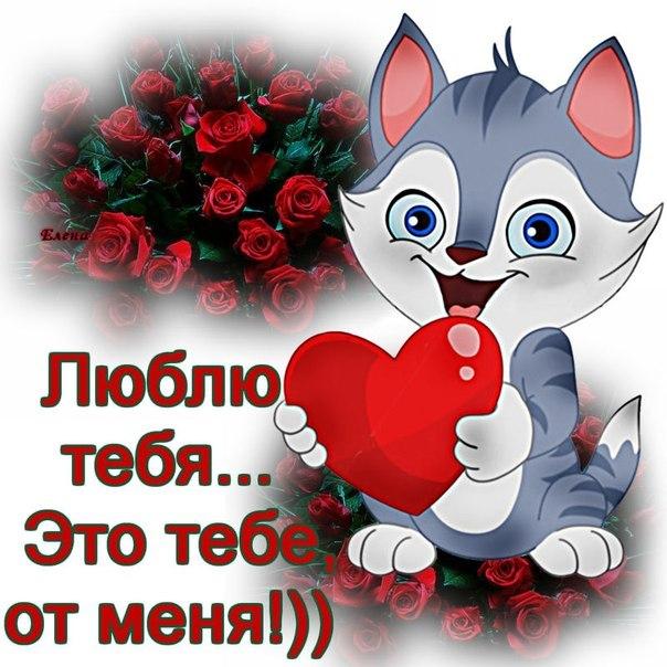 Картинки кошечки с надписью я тебя люблю золотце мое